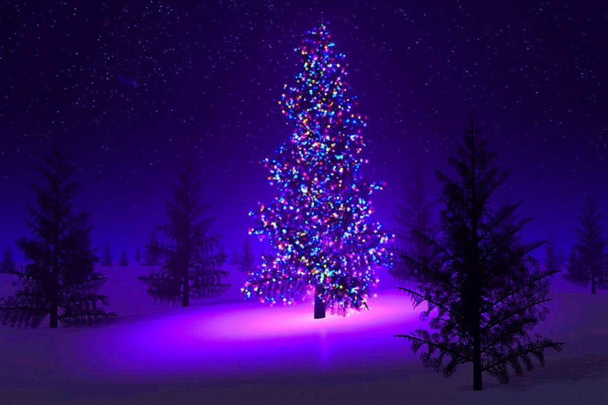 - Arbol de navidad morado ...